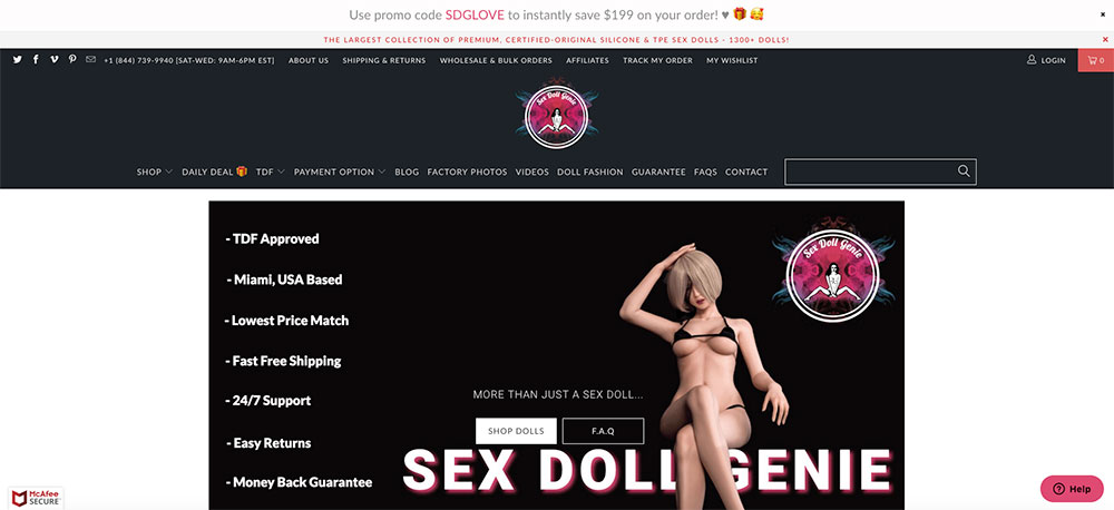 screenshot of the sex doll genie website